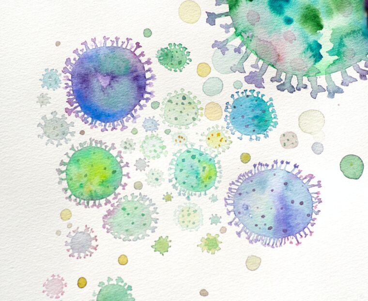バクテリアのイメージ